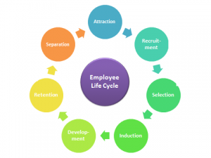 employee-lifecycle